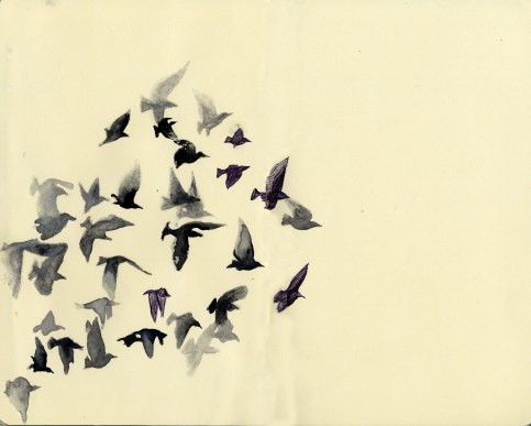 Birds in Flight